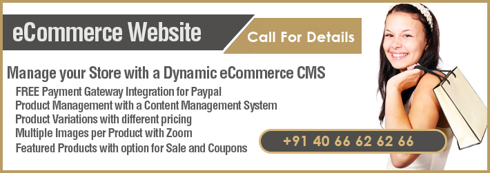 ecommerce Websites Developers India