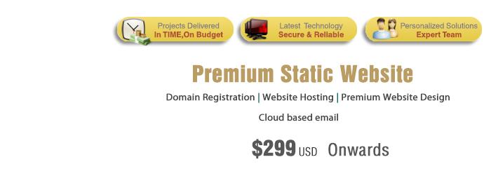 Professional Website Design Static