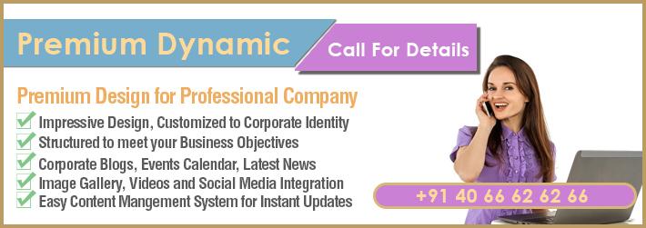Premium Website Design for SMEs and Entrepreneurs